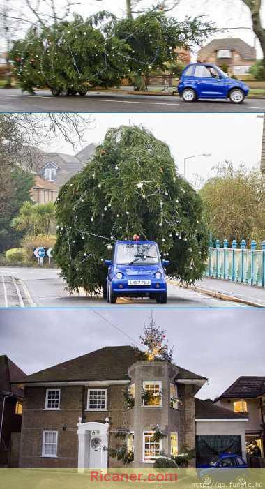 ... quatre personnes qui auront le plus gros sapin de Noël de leur rue