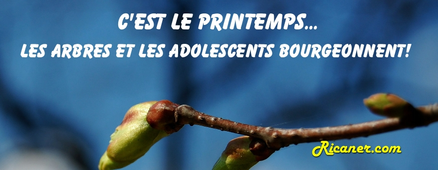 photo de couverture facebook 006
