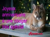 Joyeux anniversaire à une cougar très spécial